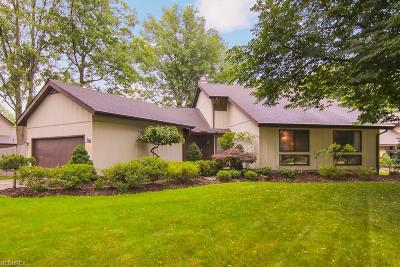 North Olmsted Single Family Home For Sale: 30924 Old Shore Dr