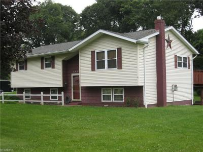 Zanesville Single Family Home For Sale: 3975 Clear Lake Cir