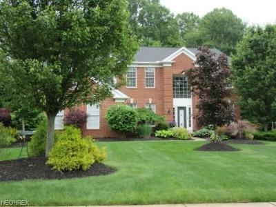 Broadview Heights Single Family Home For Sale: 1305 Fireside Trl