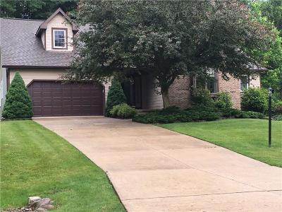 Broadview Heights Single Family Home For Sale: 2021 McClaren Ln