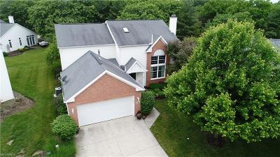 Strongsville Single Family Home For Sale: 12364 Mulberry Cir