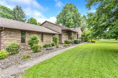 Youngstown Single Family Home For Sale: 123 Haviland Dr