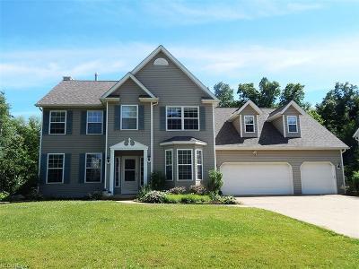Medina Single Family Home For Sale: 416 Halifax Ln