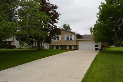 Canfield Single Family Home For Sale: 3400 Johnson Farm Dr