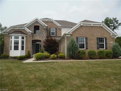 Aurora Single Family Home For Sale: 675 Morgan Trl