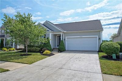 North Ridgeville Single Family Home For Sale: 37041 Chaddwyck Ln