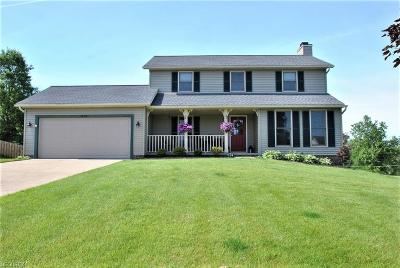 Twinsburg Single Family Home For Sale: 1646 Chestnut Trail Dr