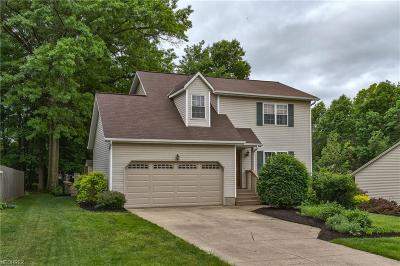Willoughby Single Family Home For Sale: 38050 Poplar Dr
