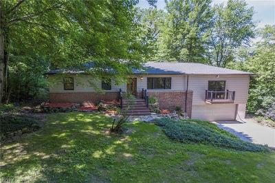 Independence Single Family Home For Sale: 7663 Stone Rd