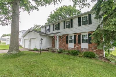 Twinsburg Single Family Home For Sale: 9963 Patton St