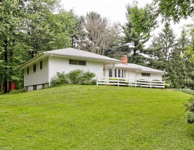 Newbury Single Family Home For Sale: 13744 Rockhaven Rd