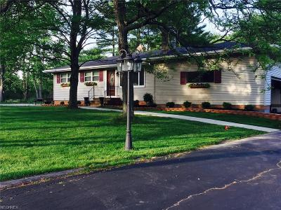 Broadview Heights Single Family Home For Sale: 8673 Avery Rd