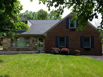 Youngstown Single Family Home For Sale: 207 Brainard Dr