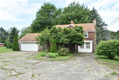 Canfield Single Family Home For Sale: 3316 South Canfield Niles Rd
