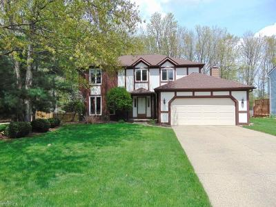 Strongsville Single Family Home For Sale: 20992 Jonathan Dr