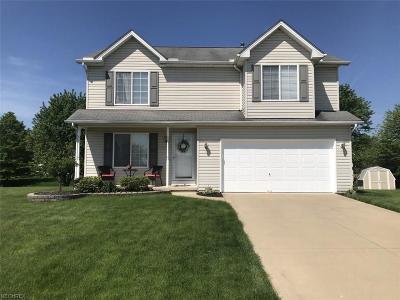 Medina Single Family Home For Sale: 347 Brenton Ln