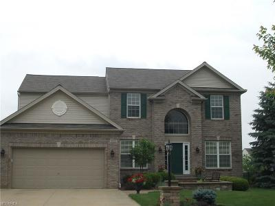 Olmsted Township Single Family Home For Sale: 9808 Tuttle Rd