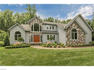 Solon Single Family Home For Sale: 38750 Lochmoor Dr