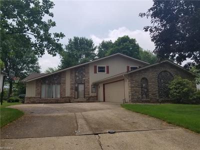 Strongsville Single Family Home For Sale: 14731 Trenton Ave