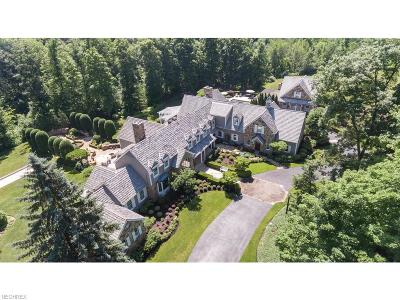 Summit County Single Family Home For Sale: 4085 Brush Rd