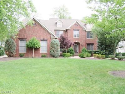 Broadview Heights Single Family Home For Sale: 3092 Osage Way