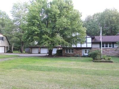 Newton Falls Single Family Home For Sale: 5155 State Route 82