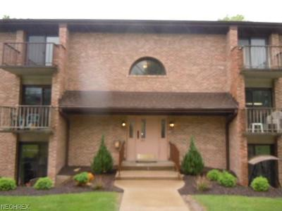 Broadview Heights Single Family Home For Sale: 550 Tollis #106