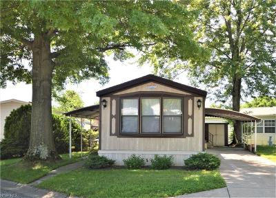 Olmsted Township Single Family Home For Sale: 9 Scenic Dr