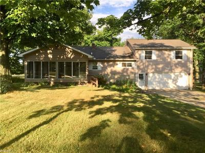 Canfield Single Family Home For Sale: 4033 Pleasant Valley Ln