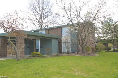 Olmsted Falls Condo/Townhouse For Sale: 26635 Central Park Blvd