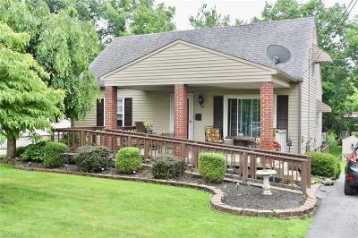 Boardman Single Family Home For Sale: 181 Terrace Dr