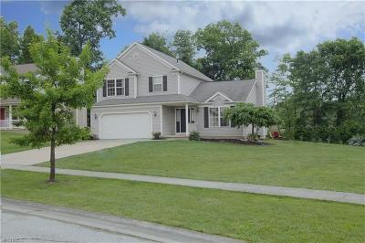 Ravenna Single Family Home For Sale: 845 Collins Pond Dr