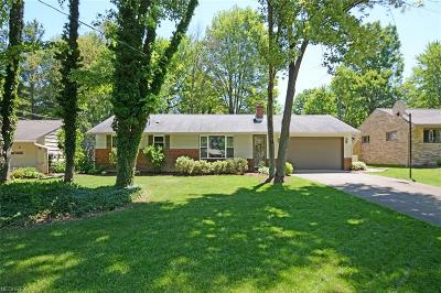 Strongsville Single Family Home For Sale: 11381 Brady Ln