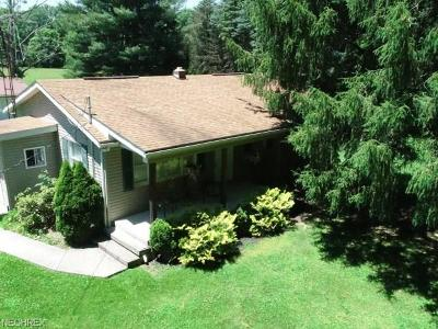 Newton Falls Single Family Home For Sale: 1674 Campbell Rd