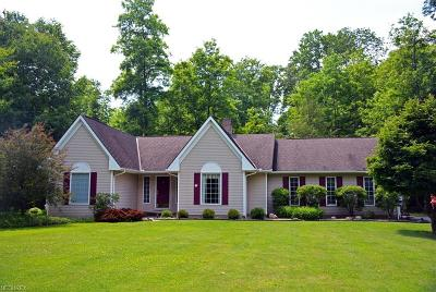 Chesterland Single Family Home For Sale: 12912 Woodside Dr South