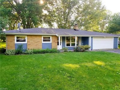 Perry Single Family Home For Sale: 3878 Ohio St