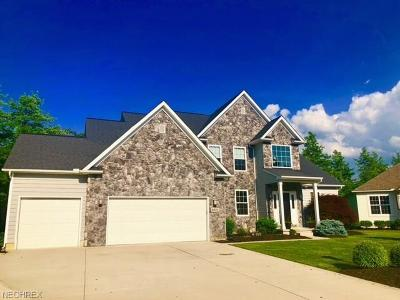 North Ridgeville Single Family Home For Sale: 8571 Mulberry Chase