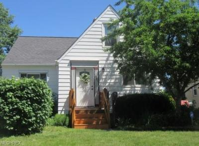 Garfield Heights Single Family Home For Sale: 9101 Plymouth Ave