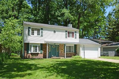 North Olmsted Single Family Home For Sale: 24064 Fairlawn Dr