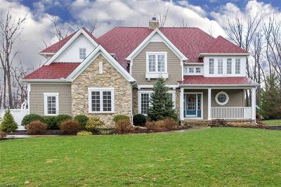 Lake County Single Family Home For Sale: 10281 Karaboo Trl