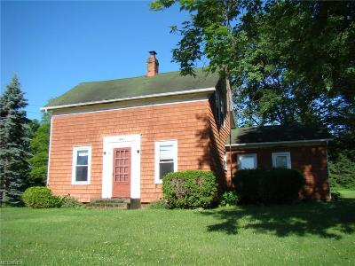 Garrettsville Single Family Home For Sale: 11003 North St