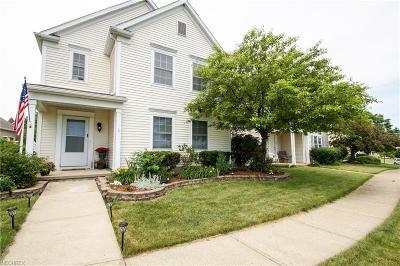 Medina Single Family Home For Sale: 1150 Chapman Ln #11