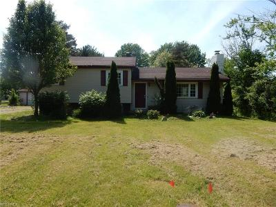 Painesville OH Single Family Home For Sale: $87,000