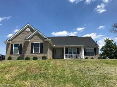 Muskingum County Single Family Home For Sale: 13612 Getz Ln