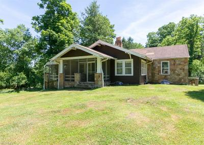 Brecksville Single Family Home For Sale: 11920 Fitzwater Rd
