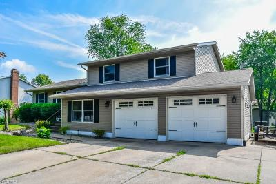 Single Family Home For Sale: 1064 Cayuga Trl Southwest