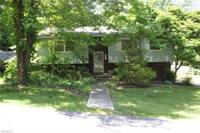 Summit County Single Family Home For Sale: 4294 State Rd