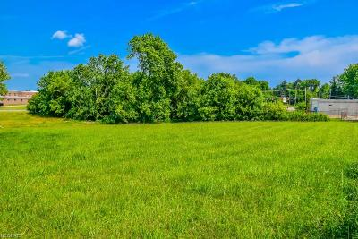 Residential Lots & Land For Sale: 0001 Market Ave North
