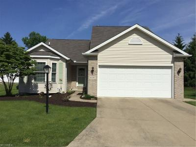 Parma Heights Single Family Home For Sale: 6087 Creekside