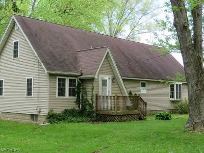 Newton Falls Single Family Home For Sale: 3958 North Pricetown Rd